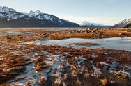Stock Photo of scenic view of the chilkat river near haines alaska on a sunny winter day.