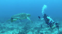 A beautiful shot of a diver swimming with sea turtles. Stock Footage