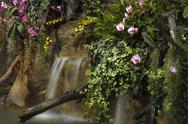 Water fall in garden Stock Photos