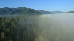 Flight over the Mountains. Forest Valley. Morning Fog. Altai. Siberia Stock Footage