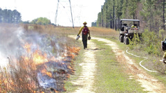 A fire crew member lighting a prescribed fire with a drip torch along a utility Stock Footage
