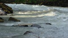 High water level in Lutschine alpine river  - view downstream Stock Footage