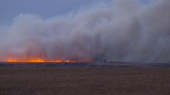 Grass fire on a prairie Stock Footage