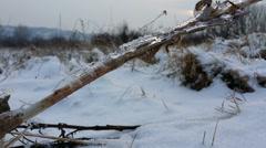 Winter 4K  [walking trough snow] _1 Stock Footage