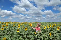 Agricultural expert inspecting quality of sunflower in field Stock Photos