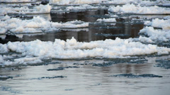 View at the ice floes from the riverside. Stock Footage