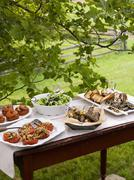 a buffet table set up in a garden for al al fresco meal. salads  - stock photo