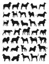 Stock Illustration of popular dog breeds silhouettes