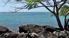 Guadeloupe Basse Terre district 026 volcanic rocks in front of caribbean sea Stock Footage