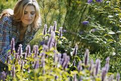 Woman tending a field of organic flowers at an organic flower nursery. Stock Photos
