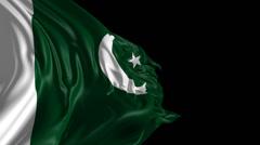 Flag of Pakistan Stock Footage