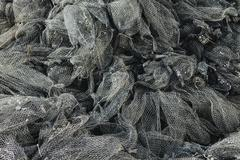 nets used for shellfish aquaculture in oyster beds. oysterville usa - stock photo