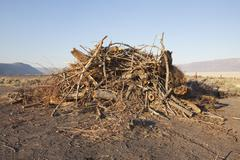 A pile of wood debris and shavings. Stock Photos