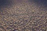 Stock Photo of dry cracked desert surface, black rock desert in nevada, usa