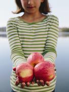 nine year old girl holding handful of organic apples - stock photo