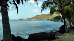 Guadeloupe Basse Terre district 030 bay, volcanic rocks between palm trees Stock Footage