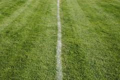 White center line on freshly cut grass. a sports playing surface. Stock Photos