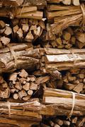 Stock Photo of firewood prepared for ritual fire. indonesia, bali