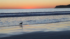 Sunset over the pacific ocean at coronado, california Stock Footage
