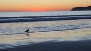 Stock Video Footage of sunset over the pacific ocean at coronado, california