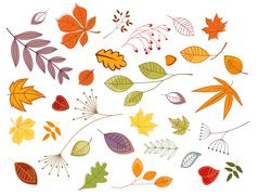 Autumnal leaves and plants Stock Illustration
