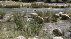 The river. Detail a river course, clear and pure water Stock Footage