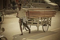 person carrying wooden planks on a barrow, india - stock photo