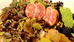 Autumn fruits Stock Footage