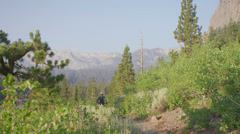 A mountain biker rides on a path near a forest. - stock footage