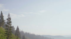 Pan left wide shot of a forested mountainside. - stock footage
