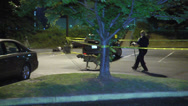 Stock Video Footage of officer with police dog night search