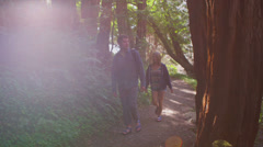 A couple walks along a path in the woods and crosses a bridge. Stock Footage