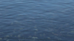Clear lake and rocks below water - stock footage