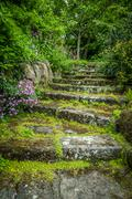 rugged steps in a beautiful garden with plants growing in between the stones. - stock photo