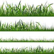 Grass - stock illustration