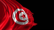 Stock Video Footage of Flag of Tunisia