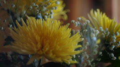 bouquet of yellow chrysanthemums - stock footage