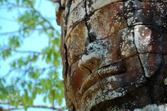 An ancient face of temple in angkor thom Stock Photos