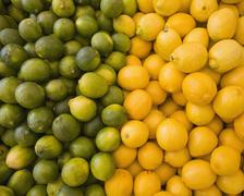 lemons and limes, citrus fruits, divided into two piles, contrasting in colou - stock photo