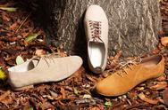 Stock Photo of fashionable sneakers in an autumn set