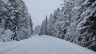 Stock Video Footage of Driving on a country lane through snow-covered forest