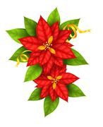 Christmas Star flowers poinsettia with gold ribbon Stock Illustration