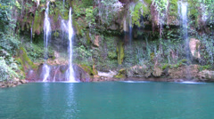A lush and fertile tropical waterfall flows into a green pool. Stock Footage