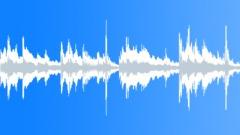 Erica (seamless loop 1) - stock music