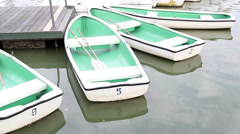 Rowboats in the park Stock Footage