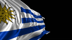 Flag of Uruguay Stock Footage
