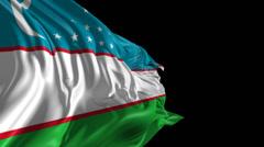 Flag of Uzbekistan Stock Footage