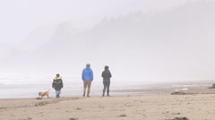 Pacific Northwest Family at Beach Stock Footage
