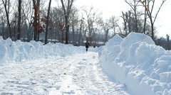 Snowy road in the park. Stock Footage