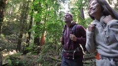 Hiking couple in forest Redwoods, San Francisco Arkistovideo